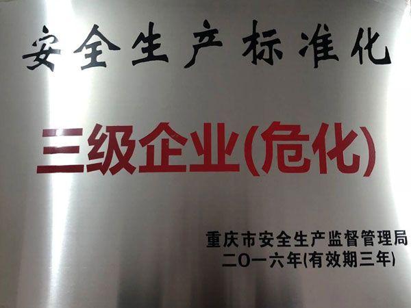 安全生产标准化 三级企业(危化)
