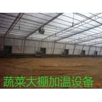 蔬菜大棚养殖加温锅炉安装示意图