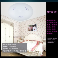 方形吸顶灯LED吸顶灯批发2105新款1件代发卧室灯饰灯具