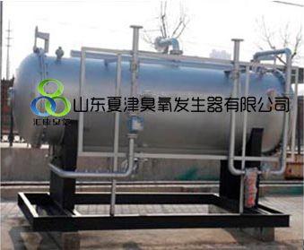 邢台-邯郸废气脱硝专用臭氧发生器