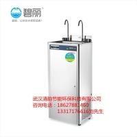 碧丽节能王饮水机JO-2B冰水王带过滤立式饮水机工厂学校机关