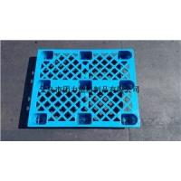 塑料托盘 高品质免熏蒸托盘 各种尺寸 网格九脚