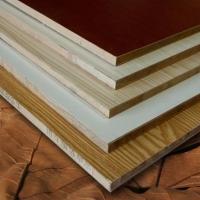 三聚氰胺贴面板 多层夹板 家具饰面板 衣柜橱柜门板
