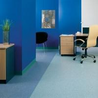 阿姆斯壮健丽龙PVC同质透心地板