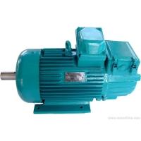 供应黄石红光机电的YZR起重电机