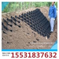 河道岸坡整修治理施工土工格室 护坡种草蜂巢格室