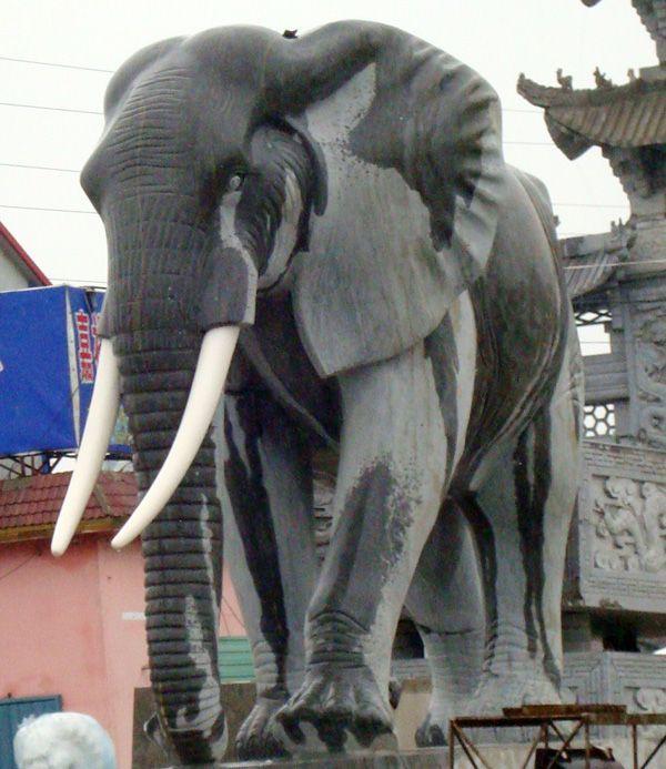 石雕象汉白玉石象,石雕大象,盛世有象等各种造型石雕大象,石雕动物龙凤大鹏,大象骏马,宝瓶鹿鹤等石雕动物 石雕大象是智慧、力量、团结的象征,它们属群居动物,社会团体结构以母象及幼象为主.代表着家庭,单位,团体,党派和社会的团结,融洽与和谐! 象谐祥之音,传统习俗中,象代表了吉祥。象能给人间带来祥瑞,象微天下太平。象即表示和平、美好和幸福。大象力大魁武,性灵却温和柔顺,相传象为摇光之星生成,能兆灵瑞,古佛就是乘象从天而降;只有在人君自养有节时,灵象才出现。大象善于吸水,水为财,凡家居窗户见水,摆放