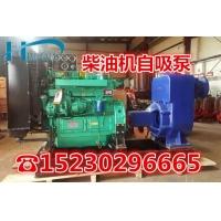 利欧50ZW15-30自吸排污泵污水泵卧式柴油机自吸清水泵