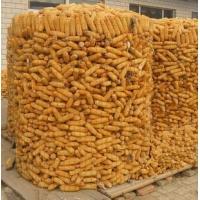 圈苞米专用电焊网