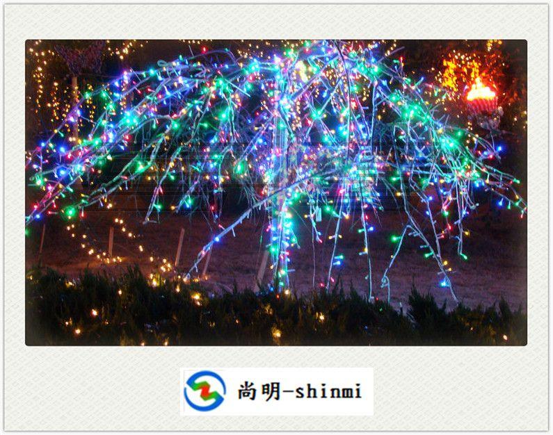 LED灯串led string light 兰州天水白银嘉峪