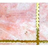 成都国尊陶瓷精品镀金砖