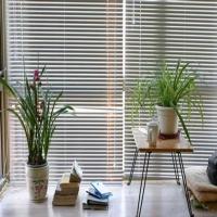 佛山窗帘 转棒式百叶窗帘卧室铝百叶窗帘遮光厨房卫生间