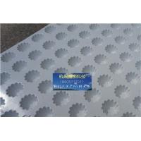 置顶PVC排水板屋顶绿化塑料排水板