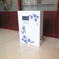 日丽家用节能小型壁挂炉电采暖炉电热锅炉