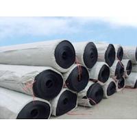 HDPE土工膜EVA土工膜(防水板)厂家销售