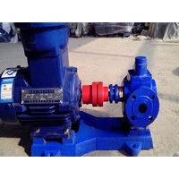 泊头YCB0.6/2.5圆弧齿轮泵