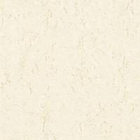 金佛陶瓷-渗花系列--星云石25014