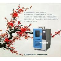 林频仪器高温恒温实验测试箱