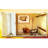 创业招商代理加盟室外装饰材料九龙水性涂料液体壁纸