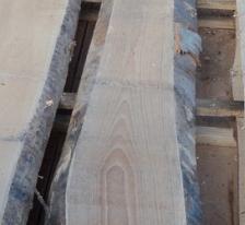欧洲榉木烘干板材