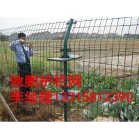 最低价双边丝护栏网