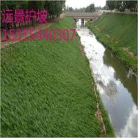 植物纤维毯_环保草毯_护坡绿化材料