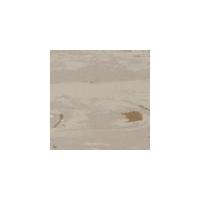 先威龙陶瓷-时尚地材(时尚登陆普ct403)
