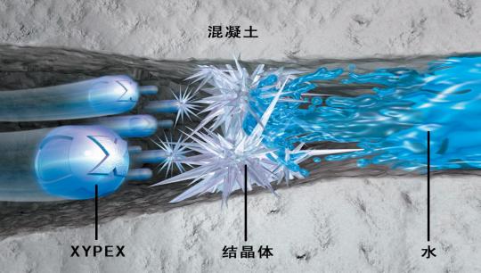 新型水泥基复合防水材料赛柏斯(xypex