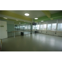 舞蹈房专用地胶 舞蹈教室地胶 舞蹈排练厅地胶