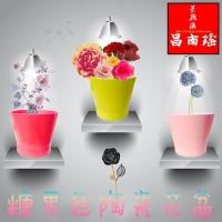 糖果色陶瓷多肉植物花盆