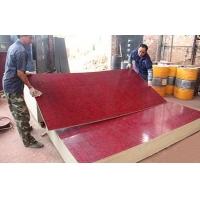 中南神箭 全薄帘竹胶板模板 四八尺板竹竹胶合板 防腐防水