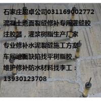 屋顶漏水裂缝修补灌注胶(灌缝胶)/水泥构件裂缝灌浆树脂