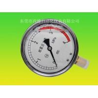 径向充油耐震压力表