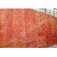 桉木建筑模板 木工板胶合板