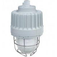 BAD83防爆无极灯,防爆灯,免维护节能灯,高频无极灯