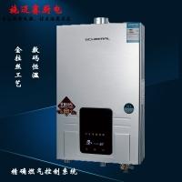 平衡式热水器 数码恒温燃气热水器金拉丝工艺高效二次换热