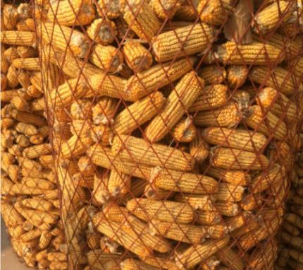圈玉米网圈苞米网钢板网圈玉米棒用网挡粮网