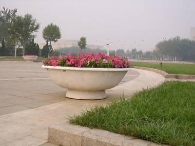 山东园林绿化设计,潍坊园林绿化工程施工,园林景观设计20090109