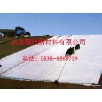 山东现代400g聚酯长丝土工布年底促销