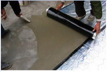 天骄建材-筑龙牌TJ-275型耐盐碱型聚合物改性沥青防水卷材