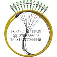 FC/APC12芯束状尾纤单模单芯尾纤