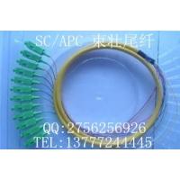 SC/APC12芯束状尾纤网络跳线