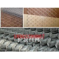 广元公路绿化铁丝网/护坡镀锌铁丝网坡面挂网