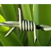 供应安平铁丝刺绳 果园苹果园围栏普通铁蒺藜刺绳