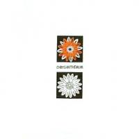 远方陶瓷-千色世界系列-哑光砖YA4500-2