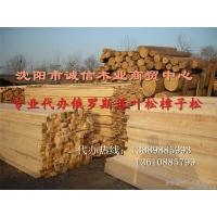 沈阳木材 木方 建筑木方 木跳板 落叶松板材批发