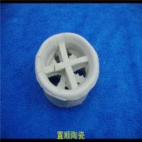 陶瓷17-23%氧化铝阶梯环散堆填料