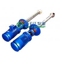 液下泵:WSY、FSY型玻璃钢液下泵