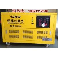 12KW自启动汽油发电机/带AST自动切换发电机