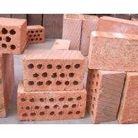 天津页岩砖厂  天津页岩空心砖 页岩砖多孔砖